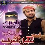"Shakeel Ashraf Naat Album ""Wali Ae Konain Da"""